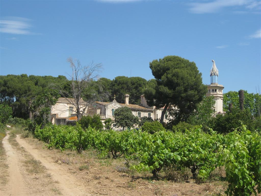 We stumbled upon this lovely 'finca' (farm).