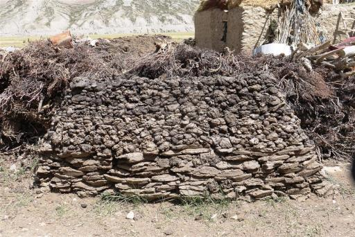 Yak and cow dung collected and dried for the very long and freezing winters, minus 20 to 40 degrees are not uncommon.