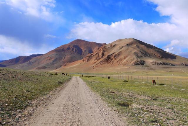 Moray plains and Tsokar