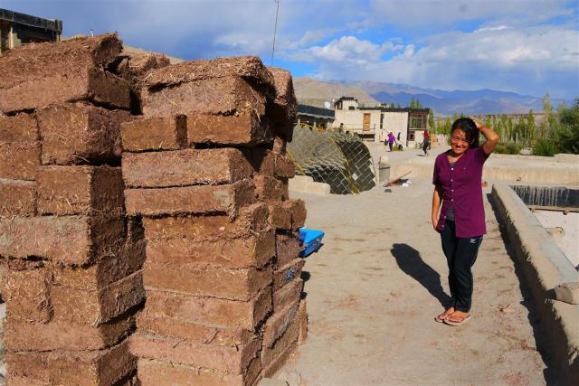Diskit shows me the adobe bricks they have been making for further extensions. All buildings are made from these bricks, stone and locally grown poplar wood (introduced to Ladakh centuries ago for building purposes but not invasive!)