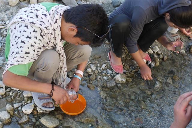 I then took the class down to one of the streams that feed the Indus river, to demonstrate the widely used in SA, MiniSASS (stream assessment scoring system) tool, which looks for different macro-invertebrates that will give an indication of water quality.
